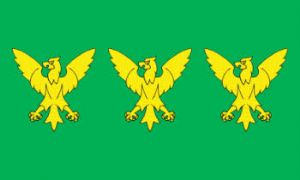 Caernarfonshire Large County Flag - 5' x 3'.